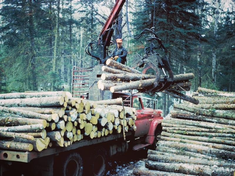 les-prevzem-dostava